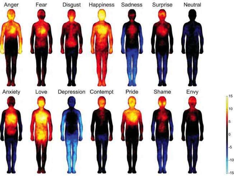 La carte des émotions et du corps
